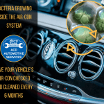 acd-automotive-services bacterial growth in the air-con system